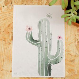 Cactus Postcard A6